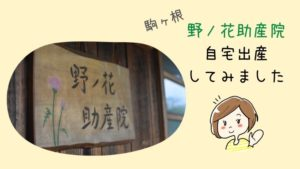 野ノ花助産院|長野県駒ヶ根市|自宅出産してみました
