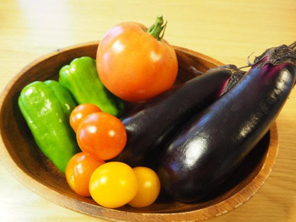 洗濯マグちゃん 野菜作り