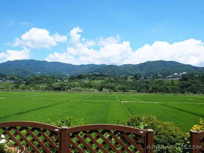 アゲイン中川村タイ料理店 お店から眺める田園風景