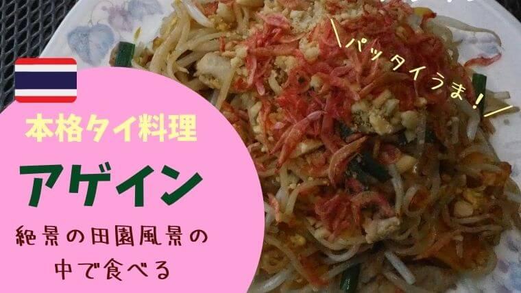 アゲイン 中川村 タイ料理