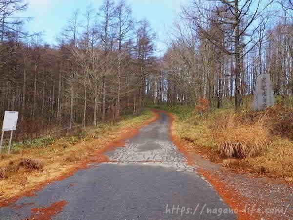 千代田湖方面からの道