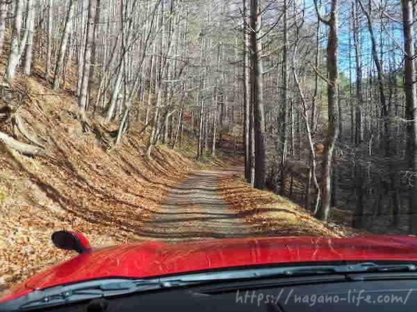 赤い車が未舗装路を進む
