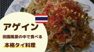 アゲイン 中川村 タイ料理店